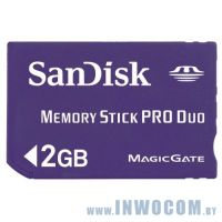 Memory Stick Pro Duo Sandisk 2Gb (oem)