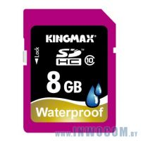 SDHC Card 8Gb Kingmax Class 10