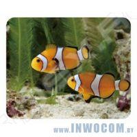 Коврик для мыши Buro BA01-13 Рыбки