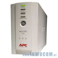 APC Back-UPS RS 500VA (BR500CI-RS)